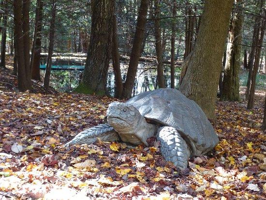Chalk Hill, Pensilvania: An outdoor turtle sculpture.