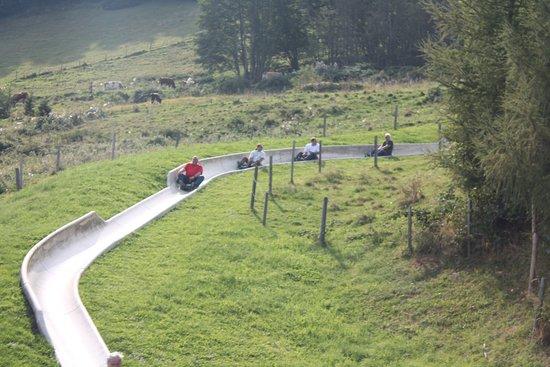 Sommer Rode in: Stau auf der Rodelbahn