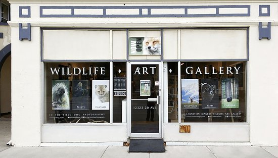 Launstein Imagery Wildlife Art Gallery