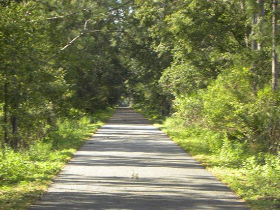 Lake Butler, FL: More of the trail