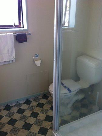 Ulster Lodge Motel : bathroom in standard 1 bedroom apartment