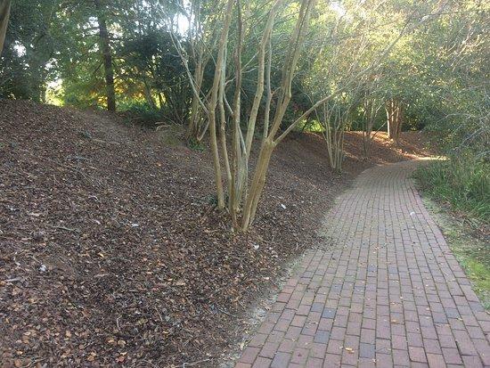 Aiken, Carolina del Sur: Beautiful Landscaping