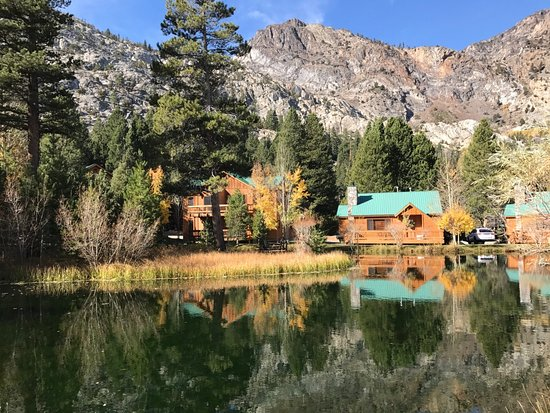 June Lake Bild
