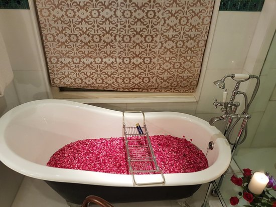 Awesome The Oberoi Udaivilas Bath with Rose petals Inspirational - Minimalist pink bathtub Modern