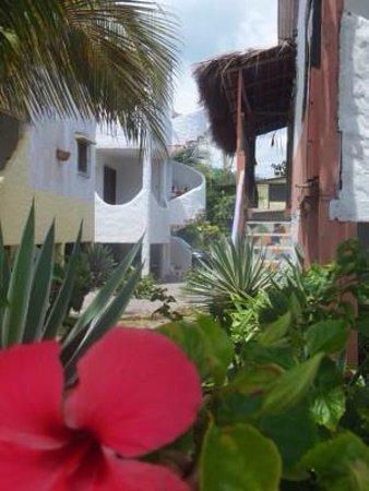 Hotel Restaurante La Terraza Lodge Reviews Same Ecuador
