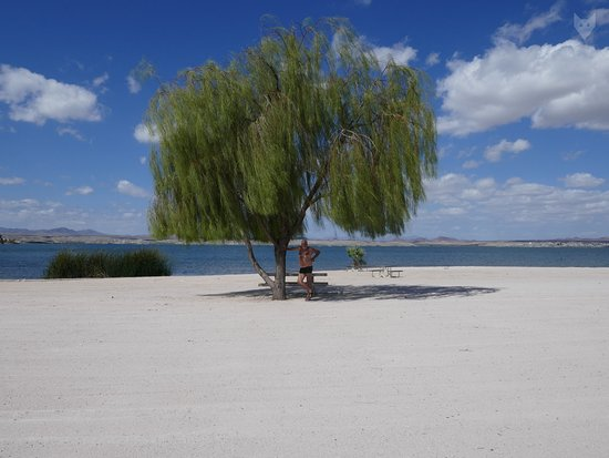 Lake Havasu State Park Beach