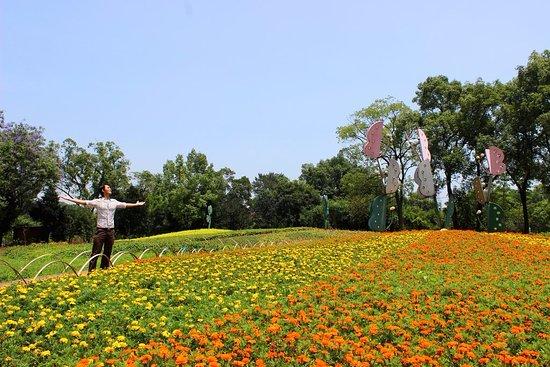 Queshan Park