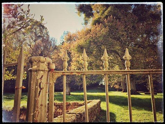 Chateau du Grand Puch : L'Orangerie