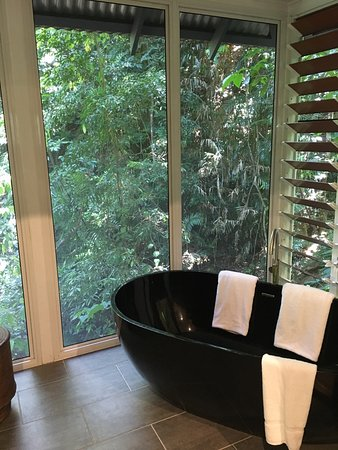 Daintree EcoLodge & Spa: photo3.jpg