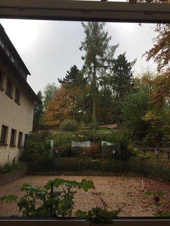 Hotel Zur Burg Sternberg: photo1.jpg