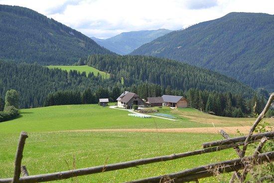 Tamsweg, Avusturya: Blick auf den Planitzerhof vom nördlichen Wanderweg
