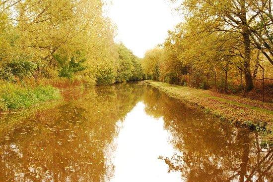 Banbury, UK: Autumn on the Oxford