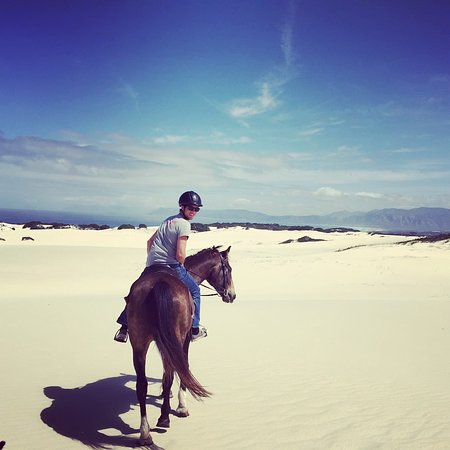 Farm 215 Nature Retreat & Fynbos Reserve: Horse riding with the African Horse company