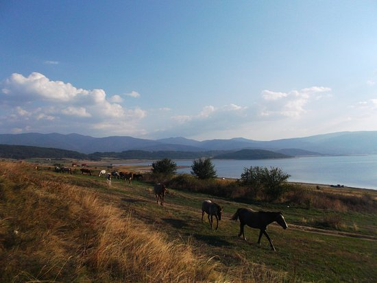 Dorkovo, Bulgaria: Lake Batak