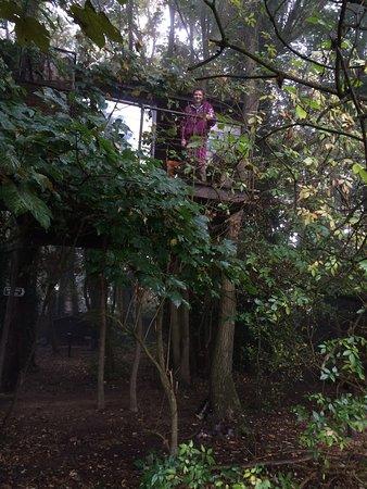 Chorleywood, UK: photo0.jpg