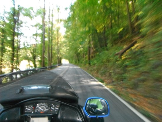 Dillsboro, Carolina del Norte: Beautiful roads