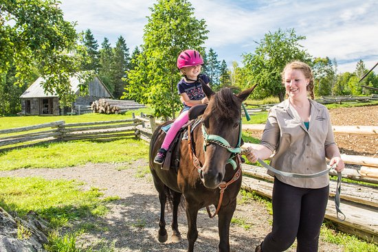 Lower Prince William, Kanada: Horseback ride