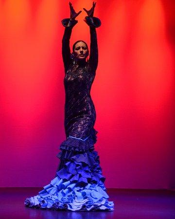 El Flamenco De Santa Fe