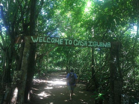 Casa Iguana: photo0.jpg
