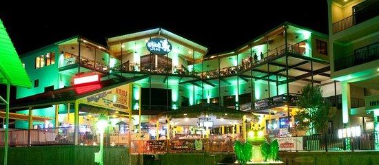 Lake Ozark, MO : H. Toad's at Night