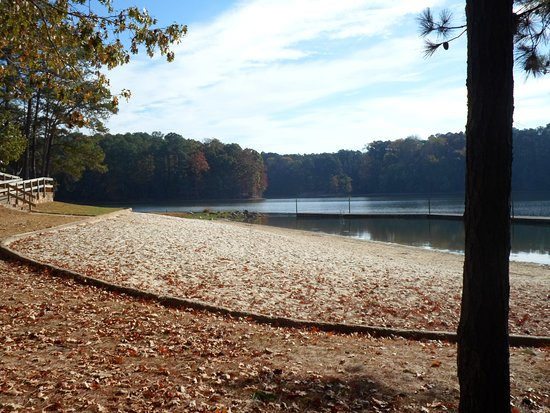 Joe Wheeler State Park: Swimming area in the summertime