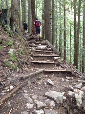 North Vancouver, Canada: Major steps