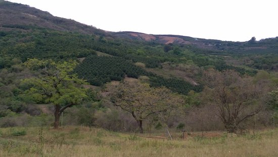 Kiepersol, Sydafrika: view from our lodge