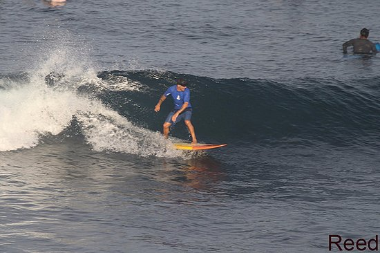 Padang Padang Surf Camp: Learning how to surf lefts! Bali is Lefts all day!!