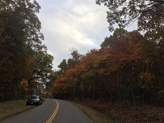 Alton, IL: Scenic drive near pere marquette state park