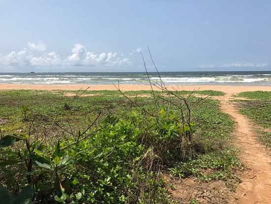 Bentota, Sri Lanka: photo4.jpg