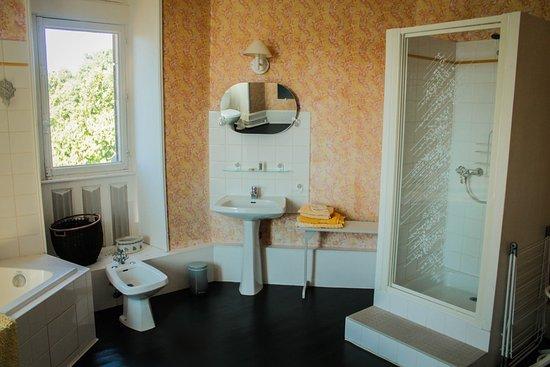 Buzancais, France: Salle de bain appartement Florence
