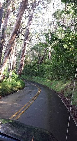 Hale Ho'omana: The road to the Ho'omana Spa is beautifully fragrant with eucalyptus. Travel up from Makawao Tow