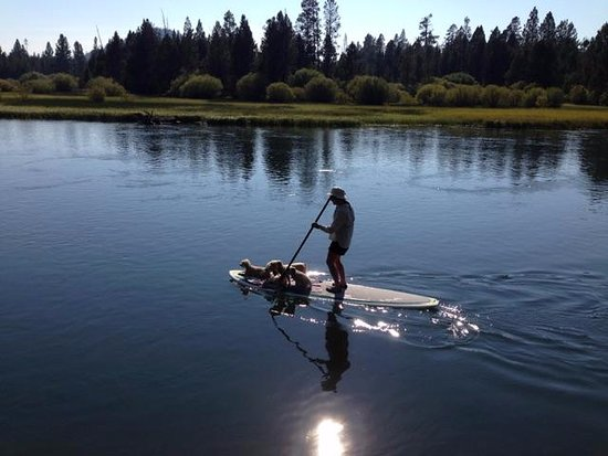 Sunriver, OR: SUP on the Deschutes by Big River CG