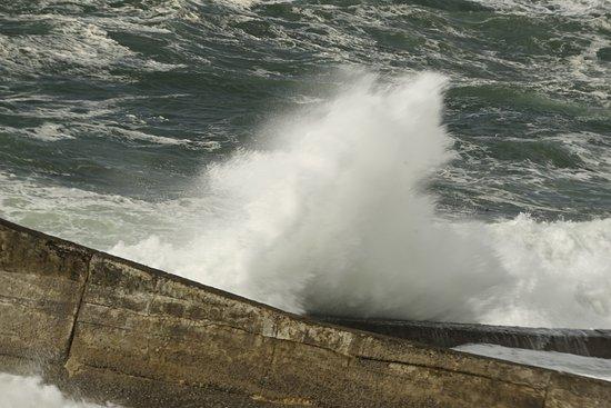 Depoe Bay, Oregón: Taken from our room. WOW!