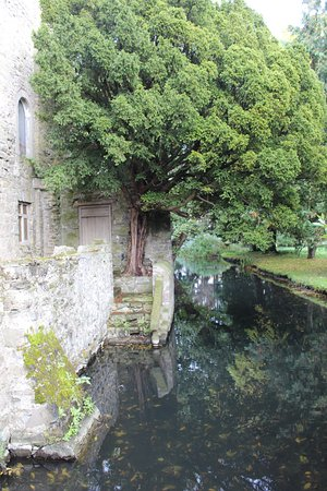 Only Castle In Ireland With A Moat