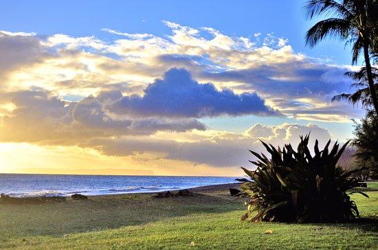 cottages waimea tripadvisor apartment hotel updated prices cottage kauai plantation photos hawaii review reviews