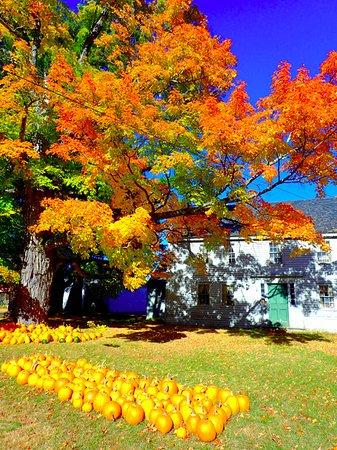 Wolfeboro, NH: Country home on Lake Winnipesaukee