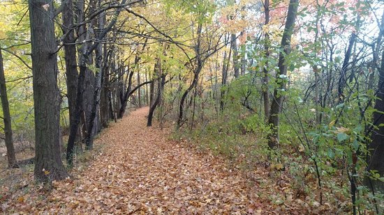 Ashland, OH: Fall pathways