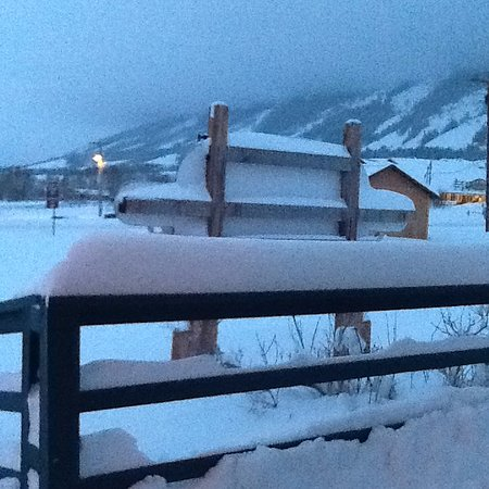 Centennial, WY: from your breakfast table any day in the winter