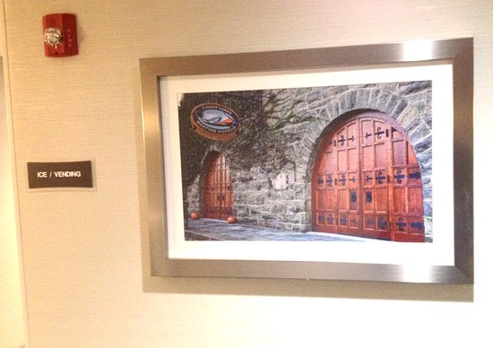 BEST WESTERN PLUS Vineyard Inn & Suites: Local artwork in the hallway