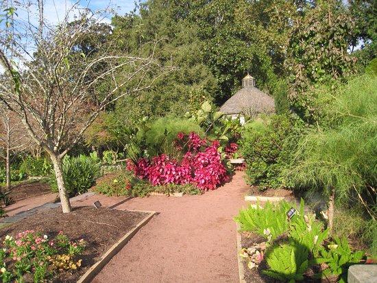 Sarah P. Duke Gardens : photo1.jpg