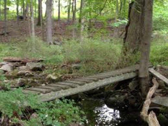 Stony Point, Estado de Nueva York: Wooden bridge