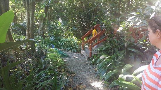 Kula Eco Park: 20161101_144613_large.jpg