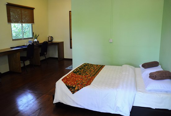 Sukau Greenview Bed & Breakfast : Double room