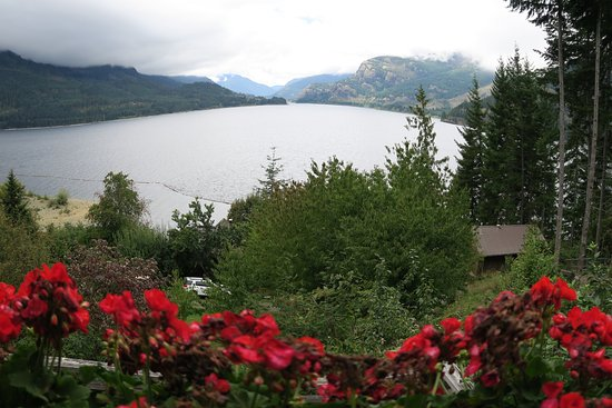 Strathcona Park Lodge & Outdoor Education Centre: View from restaurant