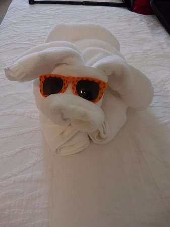 Lakewood, NJ: Our little towel animal that greeted us