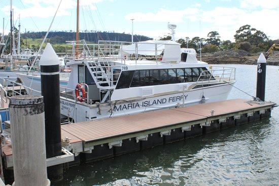 Тасмания, Австралия: Only way across.
