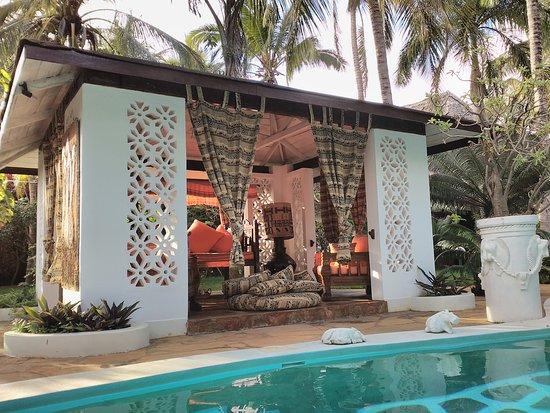 African House Resort: IMG_20161101_070244_large.jpg