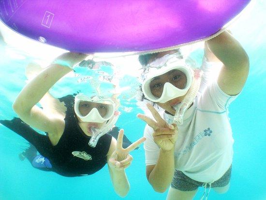 Petit Resort Native Sea Amami : スノーケルでウミガメにも会いに行けますよ~!