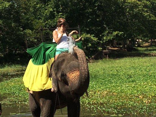 Wattala, Sri Lanka : photo3.jpg